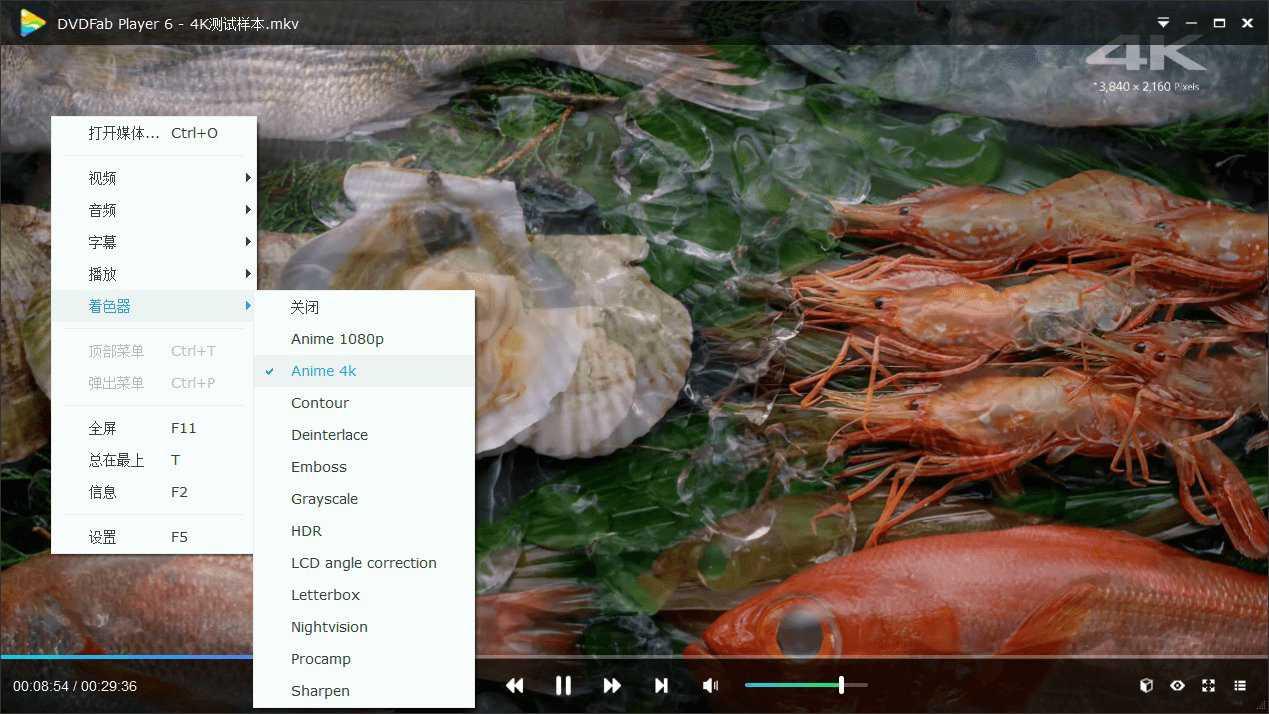 DVDFab Player v6.1.1高级版