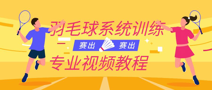 羽毛球系统训练专业视频教程